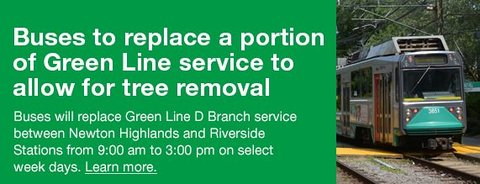 Green Line Tree Removal